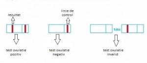 test de ovulatie